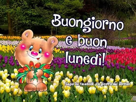Preferenza Buon lunedì! – Lia, in onore di Maria Santissima GO36